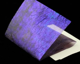 Fine UV Flash Back, Dark Ultraviolet
