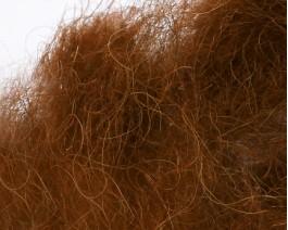 Camel Dubbing, Fiery Brown
