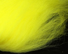 Icelandic Sheep, Bright Yellow